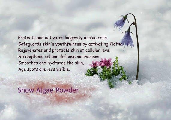 Apa Komposisi dan kandungan Byoote Collagen Berikut Manfaat serta Khasiatnya Snow Algae