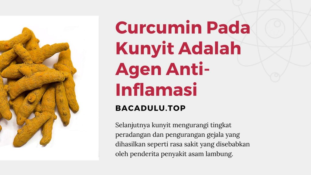 Curcumin Pada Kunyit Adalah Agen Anti-Inflamasi