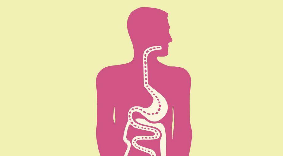 Jahe Membantu Gangguan Gastrointestinal