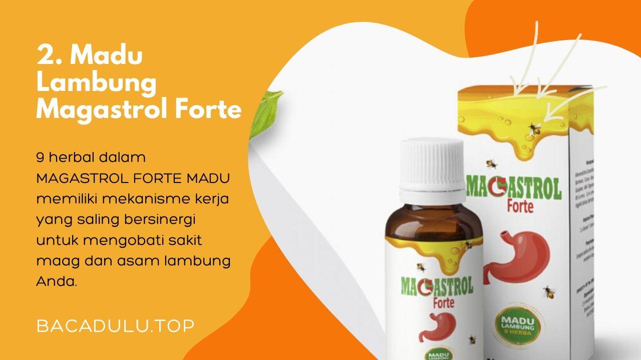 Merk madu terbaik ampuh yang bagus untuk asam lambung dan maag Magastrol Forte