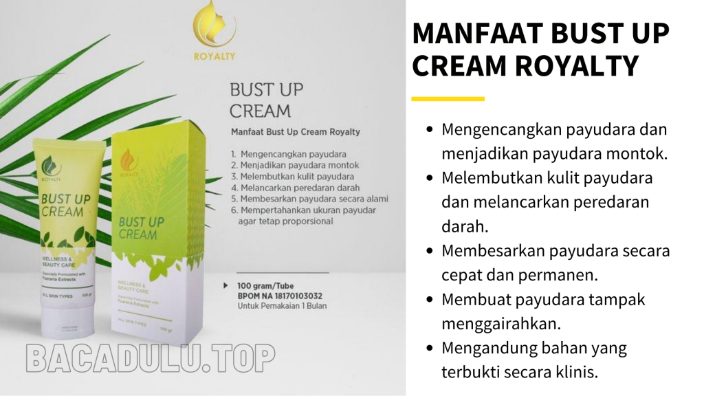 Manfaat Royalty Cosmetic Bust Up Cream Krim Pembesar Pengencang Payudara Terbaik Herbal