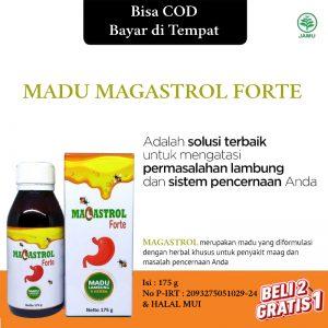Magastrol Forte Madu Lambung / Maag / Gerd