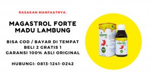 Magastrol Forte Madu Obat Herbal Asam Lambung / Maag / Gerd