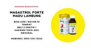 magastrol forte madu obat herbal asam lambung maag gerd